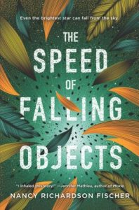 The Speed of Falling Objects by Nancy Richardson Fischer