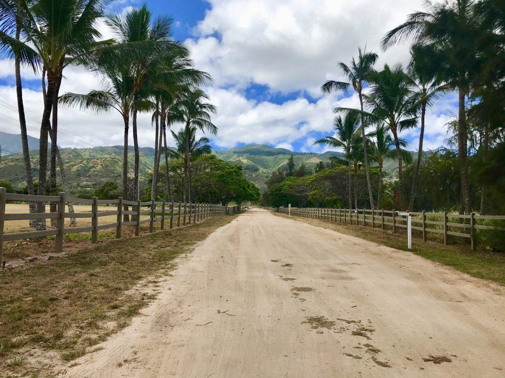 Dillingham Ranch/Polo Fields in Mokuleʻia